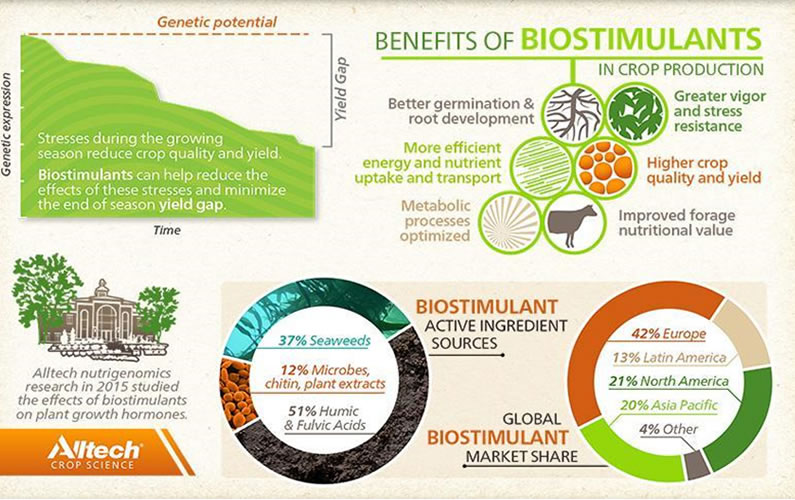 Diagram showing benefits of biostimulants
